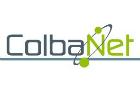 Perte nette trimestrielle chez Colba.Net