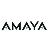 Logo de Groupe de jeux Amaya