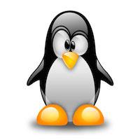 Les professionnels Linux recherchés en entreprise