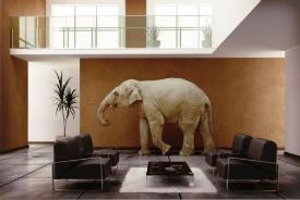 Un éléphant dans la pièce
