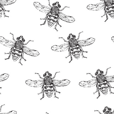 Ce que l'apiculteur peut nous inspirer à propos du leadership