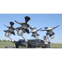 Robot d'inspection de lignes d'électricité signé Hydro-Québec