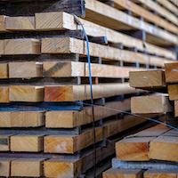 Des logiciels forestiers produits à Rimouski